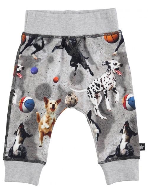 Pantalones Molo Kids Sammy Leaping Dogs