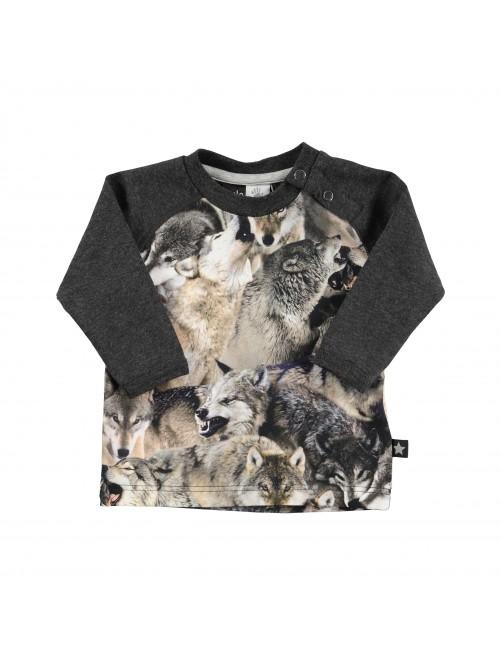 3W15A408_4353_Camiseta_Molo_Ebbe_Wolfpack_Gris_moda_alternativa_infantil