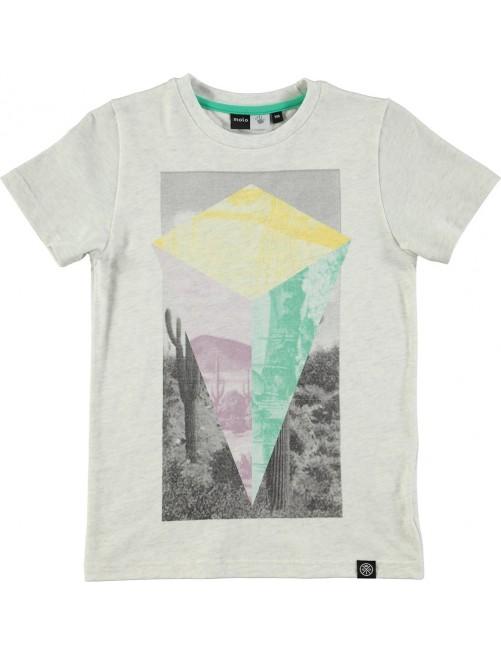 Camiseta Molo Kids Ravento Cactus Triangle