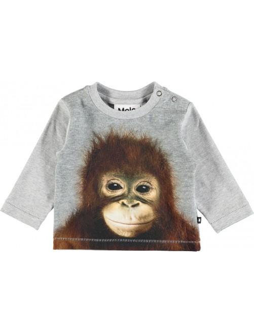 Camiseta Molo Kids Enovan Orangutan