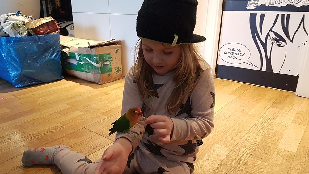 DappBaby Moda infantil alternativa moderna sostenible tienda online zaragoza